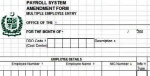 Change Pro Forma Multiple Entries