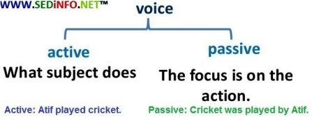 Active and Passive Voice - Change of Voice - Introduction