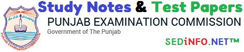 5th Class PEC Science Paper UrduEnglish Download