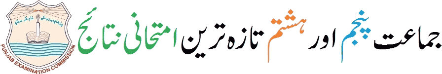 Check-PEC-5th-&-8th-results-2019-of-all-Punjab-schools-online