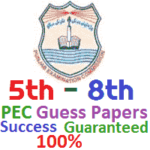 8th Class PEC Exam Guess Papers
