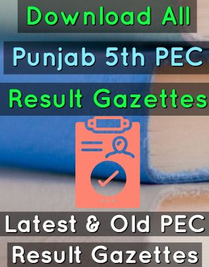 Download 5th Class PEC Result Gazettes 2013