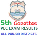 Vehari 5th PEC Result Gazettes 2011