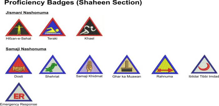 Badge System for Shaheen Scout Proficiency Badges 2