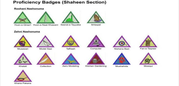 Badge System for Shaheen Scout Proficiency Badges 1