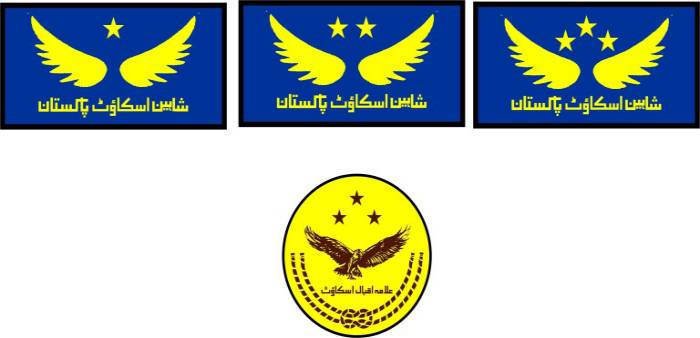 Badge System for Shaheen Scout star badges